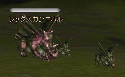 rf_pb_rex.jpg